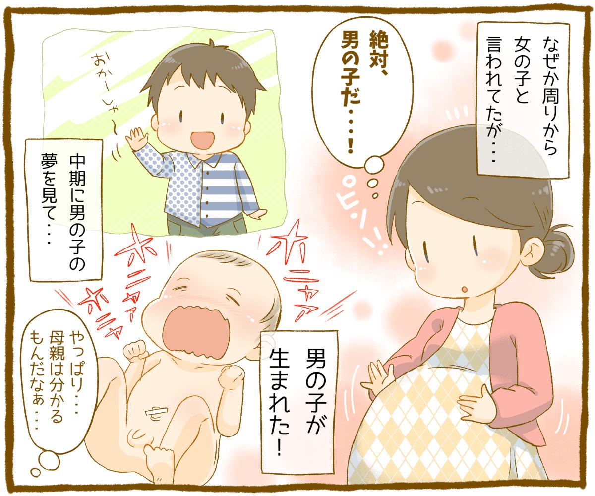 の 赤ちゃん 妊娠 夢 中