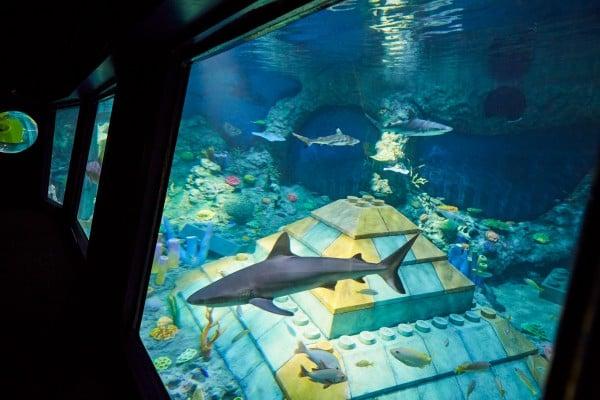 33-A_Submarine Adventure