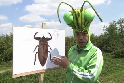 タガメ愛が特別編に!Eテレ『香川照之の昆虫すごいぜ!』第3弾が8月12日(土)放送