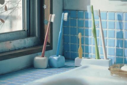 「結婚」から「子どもの成長と自立」、そして「死」 歯ブラシで描く「家族50年の歩み」