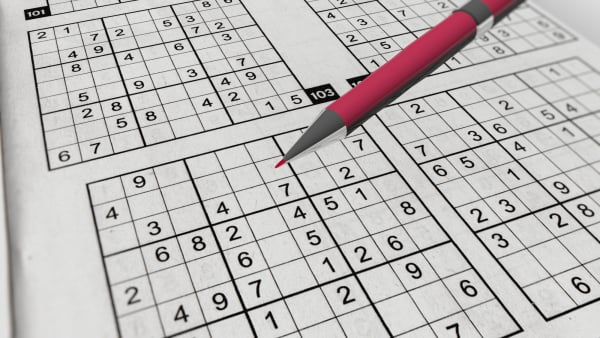 Sudoku Game with Perplexing Grids of Digits