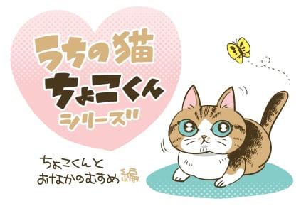 「ちょこくんとおなかの娘」#うちの猫ちょこくんシリーズ