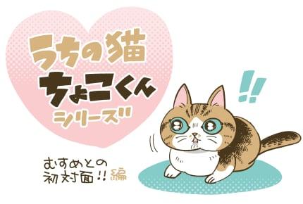 「ちょこくんと誕生した娘 初めての対面」 #うちの猫ちょこくんシリーズ