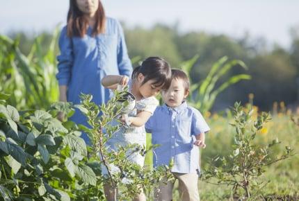 夏休みは子どもとフルーツ狩りで「旅育」を!おすすめの果物と知っておきたい注意点