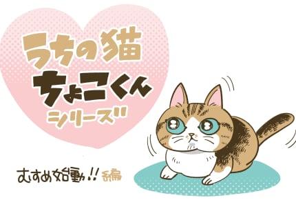 「ちょこくんとハイハイしだした娘」  #うちの猫ちょこくんシリーズ