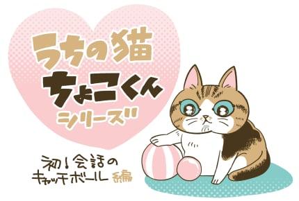 「なんで私にはちょこくんみたいな尻尾はないの?」 #うちの猫ちょこくんシリーズ