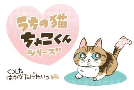 「娘、ちょこくんに靴下を履かせたい!」 #うちの猫ちょこくんシリーズ