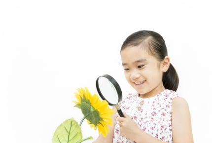 夏休みの子どもの宿題、8割の親が手伝うことに!?いまどきの「自由研究」事情とは