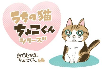 「お出迎えちょこくん」 #うちの猫ちょこくんシリーズ