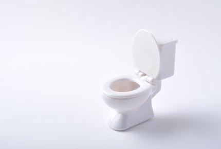 トイレに便座カバーやマット類がなかったら驚く?みんなのトイレ事情を教えて!