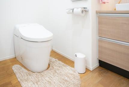 自動でふたが開くトイレにビビるわが子!「エアータオルの音」や「流水音」が怖いという子どもへのオススメの対応とは