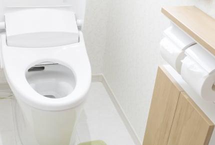 男性も「家のトイレは座ってする」が7割!?立つ・座るで変わる家のトイレ掃除事情とは