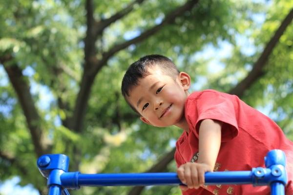 ジャングルジムに登る幼児 (3歳児)