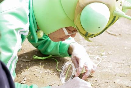 Eテレ『香川照之の昆虫すごいぜ!』5月3日(金)新作放送決定!テーマは身近な昆虫「アリ」