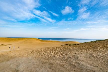 【鳥取県】鳥取といえば砂丘……だけじゃない!砂丘近くの子連れで楽しめる穴場観光スポット