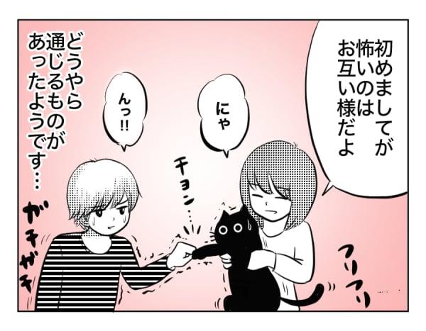 息猫10歳1話_4コマ1