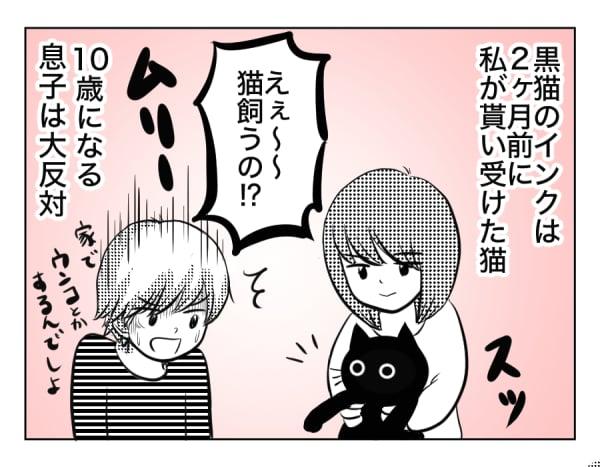 息猫10歳1話_1コマ