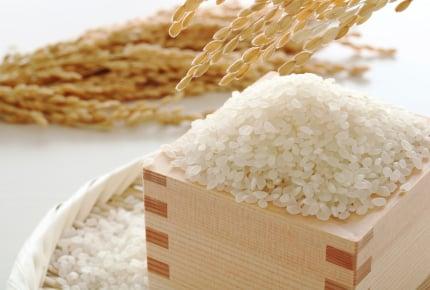 みんな、お米はどこで保管している?虫がつきにくい正しい保管方法とは