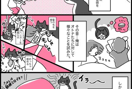 第2話 猫が深夜に子どもを起こそうとするのは、まさかの理由……!? #見守り猫のオレちゃん