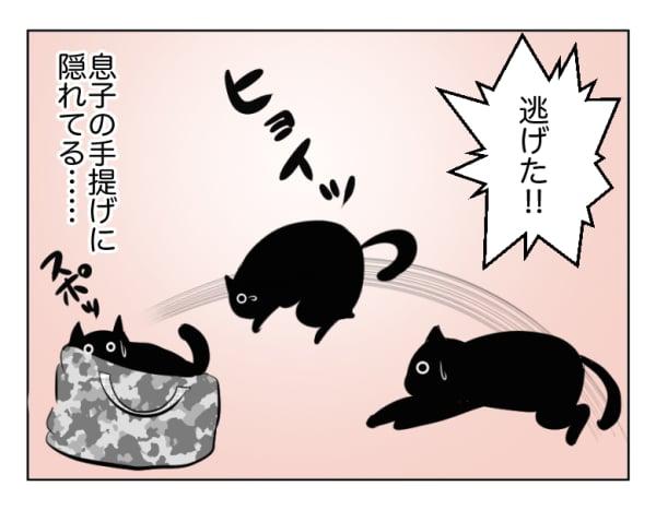 息子と猫15話2コマ
