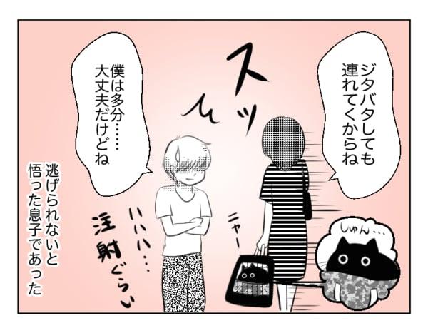 息子と猫15話4コマ