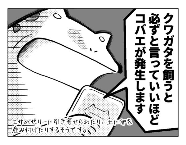 想定外の侵入者_4