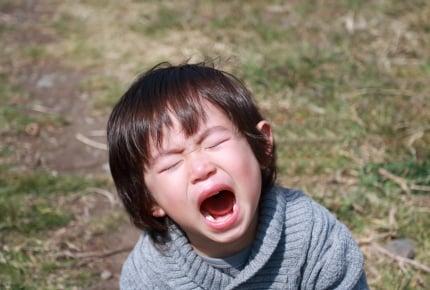 気に入らないとすぐに大声で「ギャー!」と叫ぶ2歳児。育てかたを間違えた?