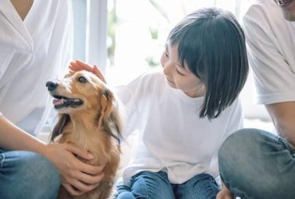 赤ちゃんと犬のいる暮らし。新生児期の赤ちゃんが犬と触れ合っても大丈夫?
