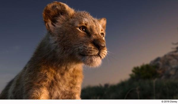 Lion-King_LA_sub1