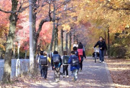 """小1の子どもが下校途中に頻繁にウンチをおもらししてしまう。""""朝に快便""""を習慣にしたいけれど何かいい方法はある?"""