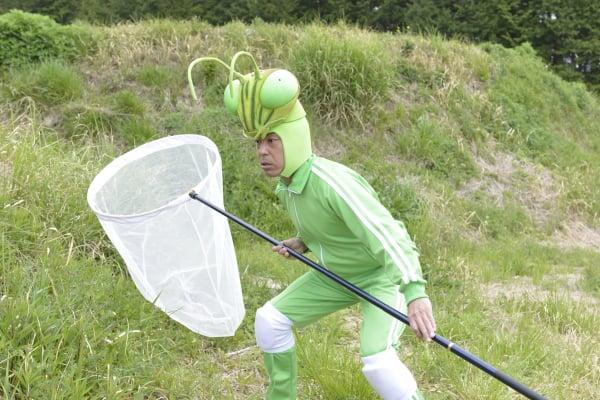 過去に放送された『昆虫すごいぜ!』より 画像提供:NHK