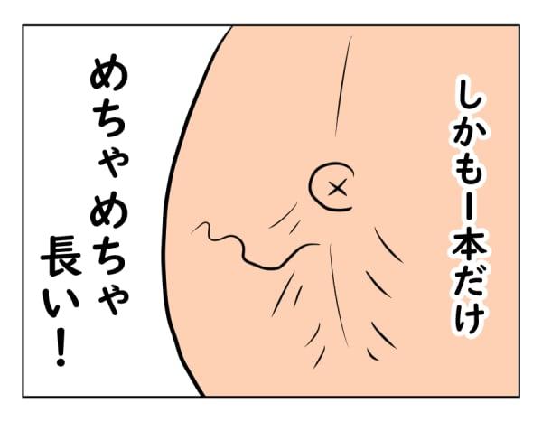 moti17-3