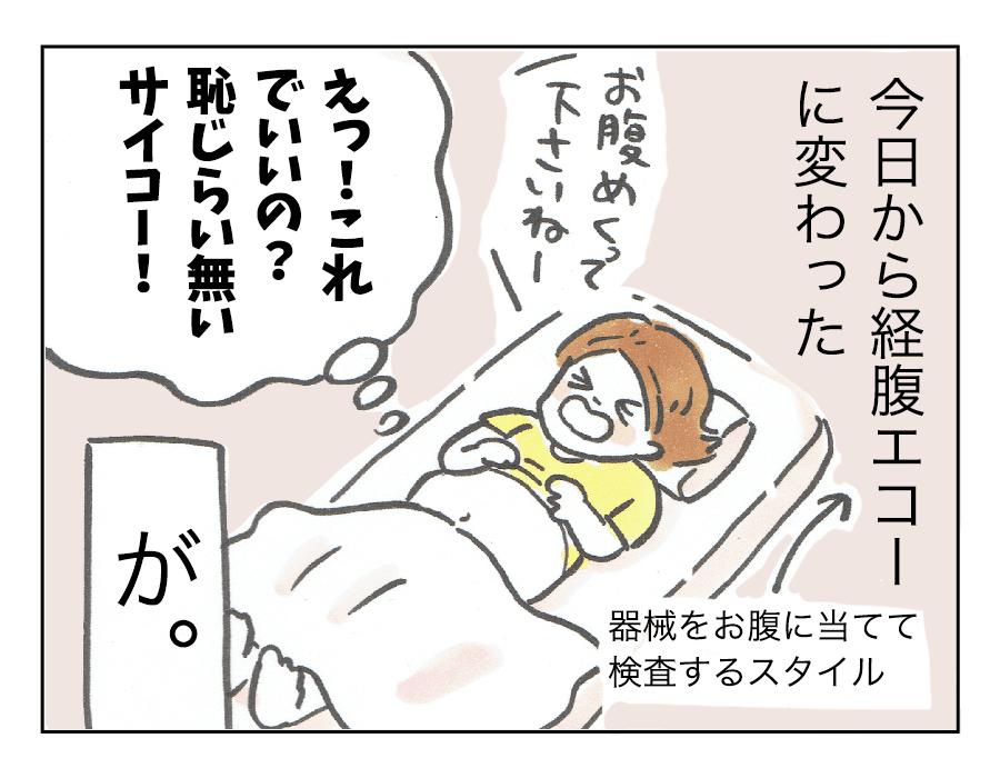 経腹エコー2