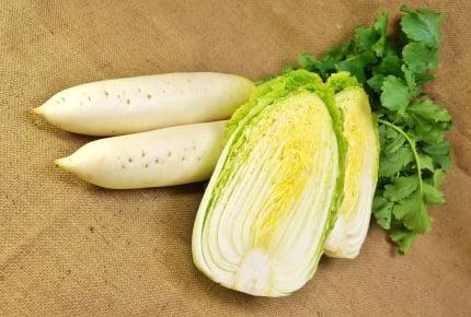 大量に頂いた白菜と大根を消費したい!みなさんオススメの簡単&美味しいレシピは?