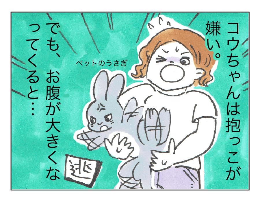 フィット1
