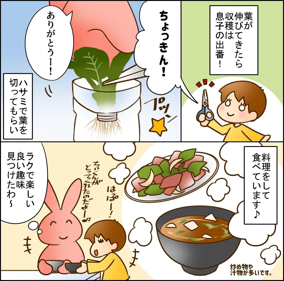 園芸が苦手でも大丈夫!「再生野菜」のキッチンガーデニングは気軽に楽しめる