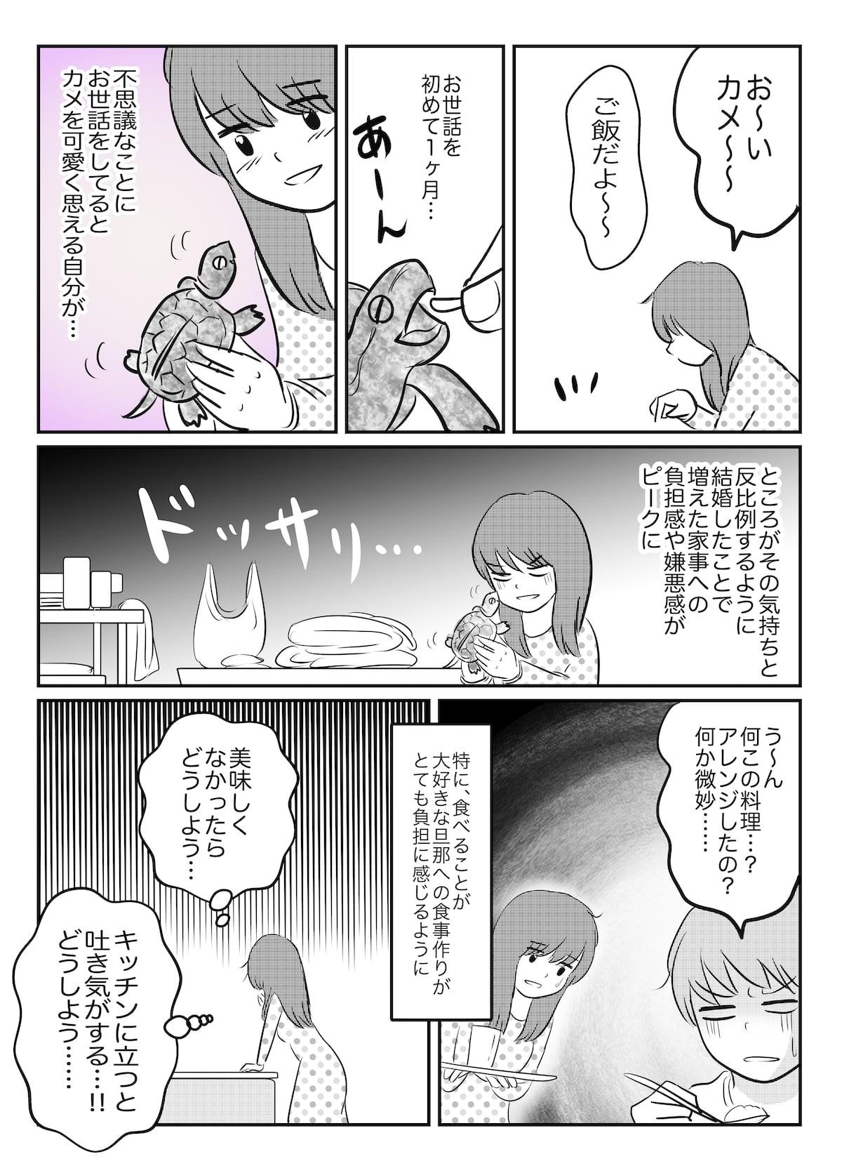 旦那とカメ_002 (3)