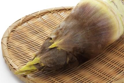 下処理前の筍をもらったら、どうしたらいいの?簡単なアク抜きとおいしいメニュー紹介