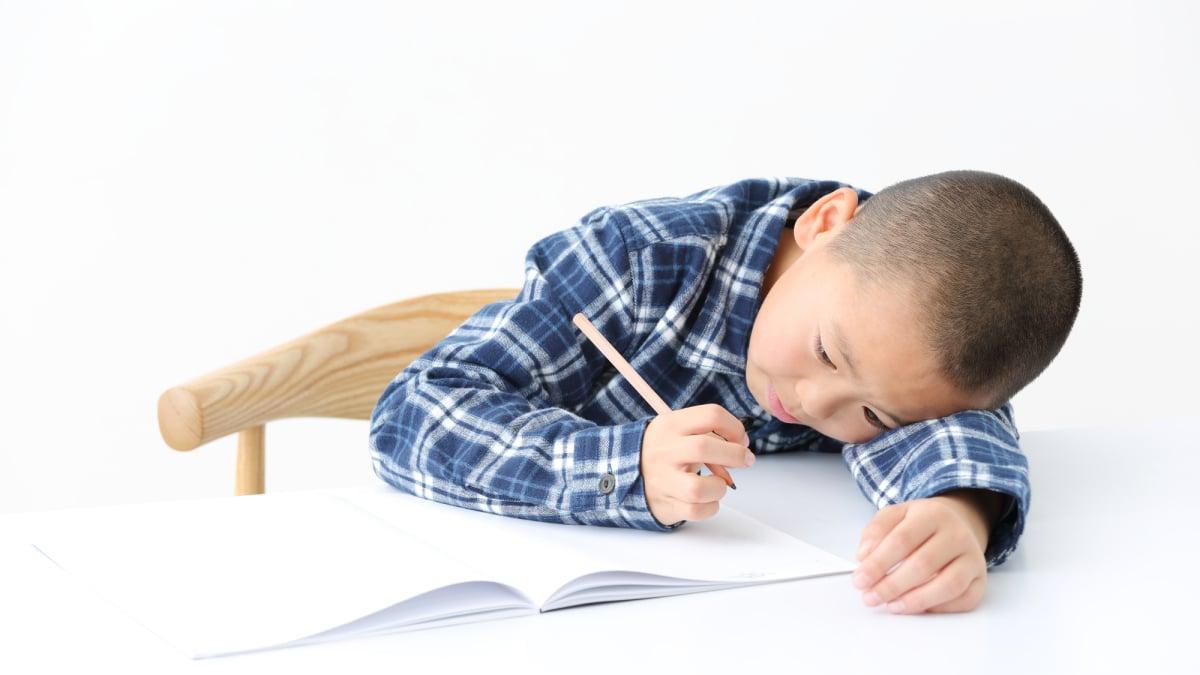 長 勉強 年 長さ比べと広さ比べが勉強できる無料プリント