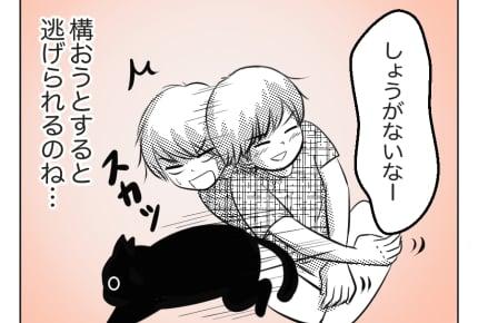 【11歳息子と猫】人の子も猫も構われるのは…… #4コマ母道場
