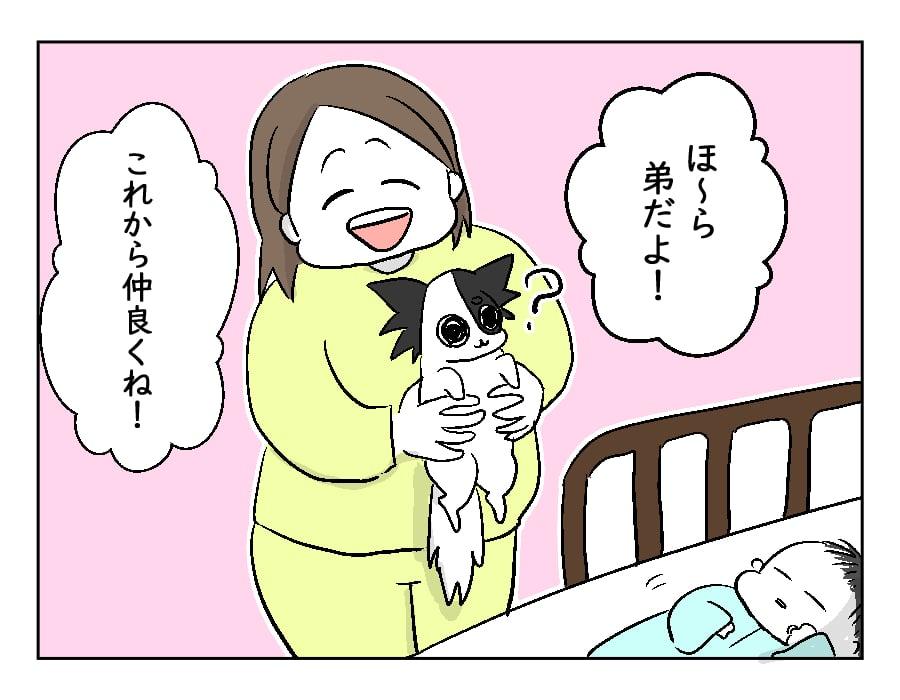 75話 赤ちゃんとのご対面-2