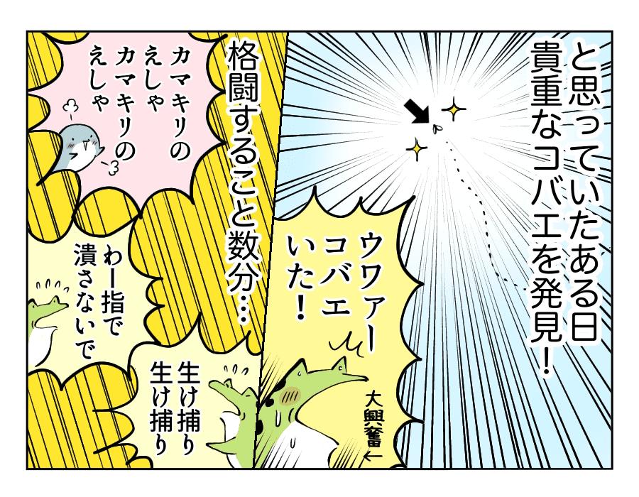 虫好き男子4_コバエ捕獲劇2