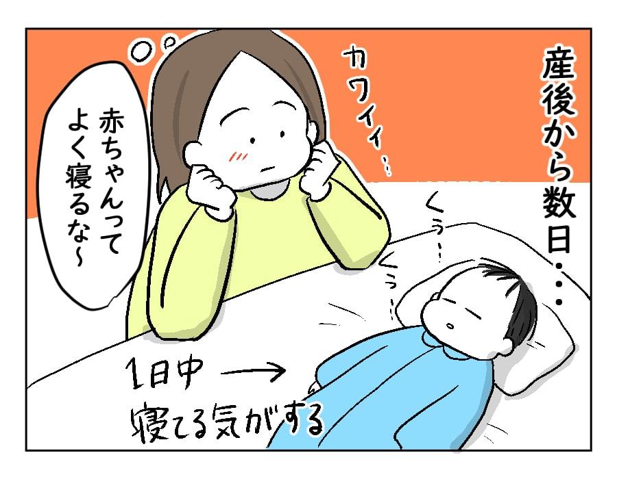【どすこいママ育児】新生児との生活開始!新米ママの願いはただひとつ