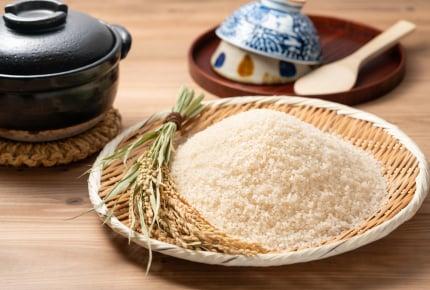 ショック!米びつに無数の小さな虫……家でお米を保管するときの注意は?