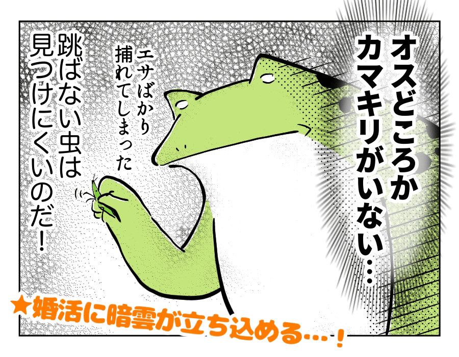 虫好き男子16_いざ婚活4