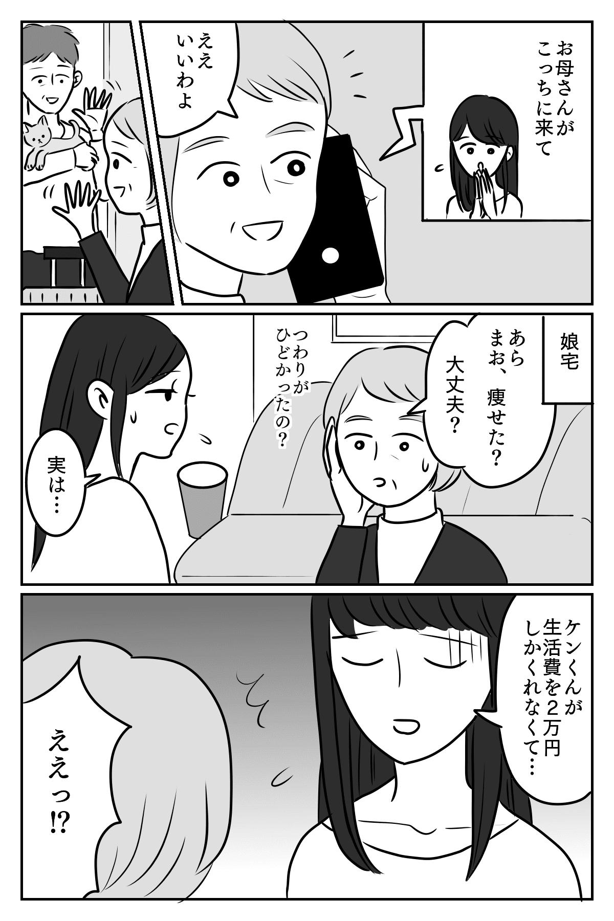 【第1話:生活費2万円】娘の夫がとんでもないケチだった……もしかしてモラハラ?01