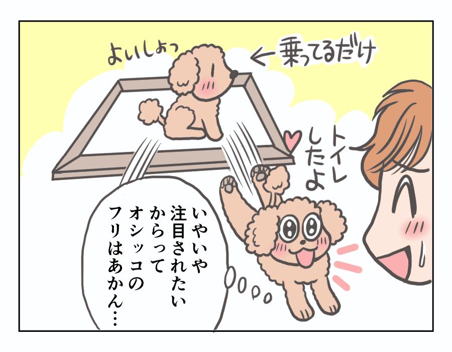 【娘と愛犬プリンの成長記】6-4
