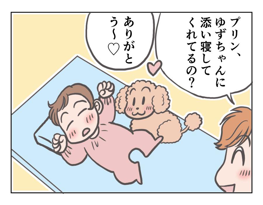 プリンと赤ちゃん7-1