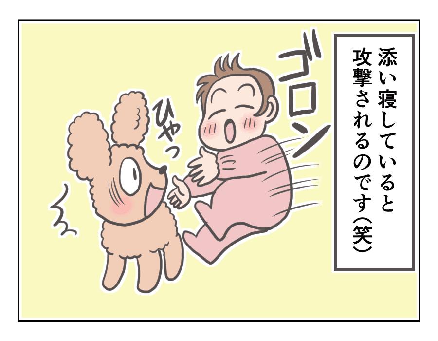 プリンと赤ちゃん7-3