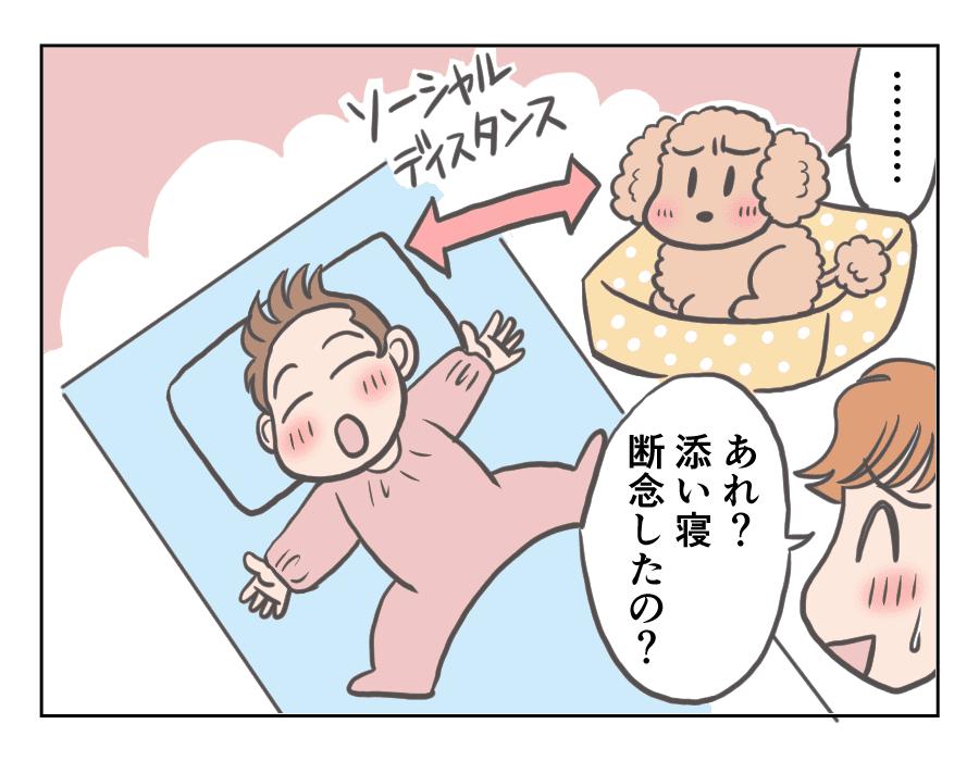 プリンと赤ちゃん7-4